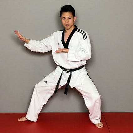 ONLINE TOUR: Teaching - Taekwondo Professionals